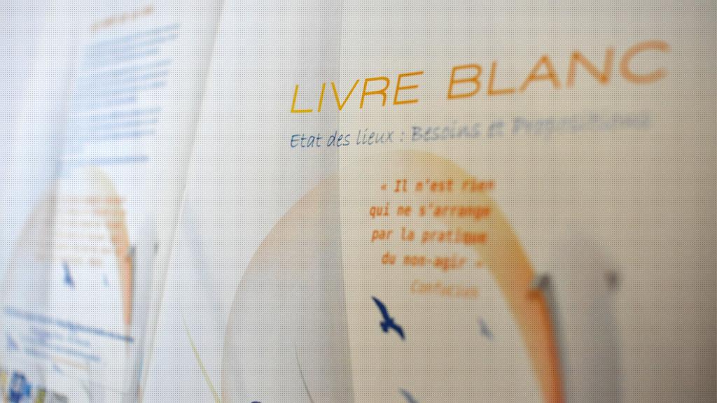 Livre Blanc - Maison des Associations - Marseille